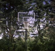 basket-76_L